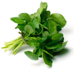 blog-watercress