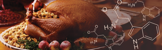 blog-turkey-tryptophan